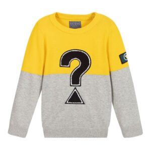 Πουλόβερ ? Yellow/grey Guess